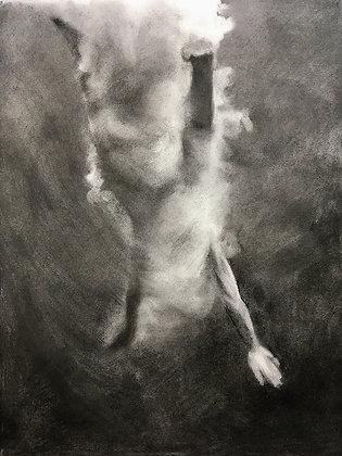 'Shapeshifter Study I' by Patsy McArthur