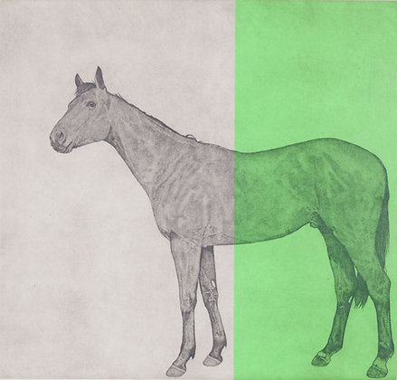 'Horse Study Green' by Guy Allen