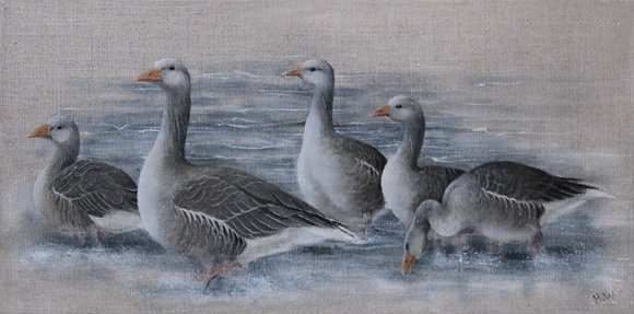 'Grey Lag Geese' by Helen Welsh