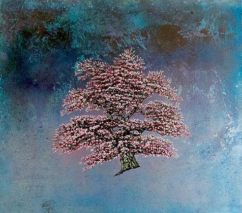 'Andromeda' by Jack Frame
