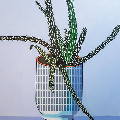 'Big Aloe' by Donald MacLean