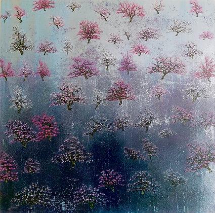 'Coral Bloom' by Jack Frame