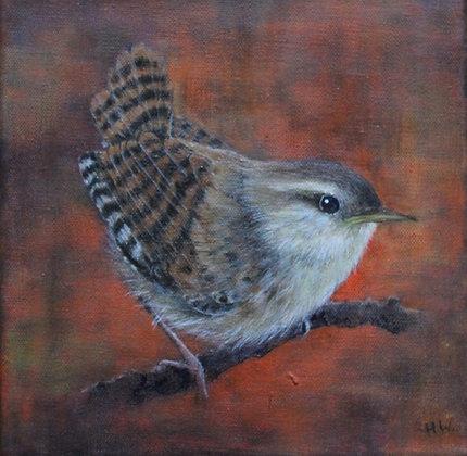'Wren on Branch' by Helen Welsh