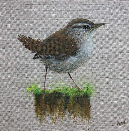 'Wren on mossy post' by Helen Welsh
