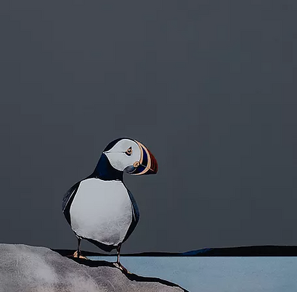 'Isle of Lunga Puffin' by Ron Lawson