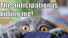 Word of the Month: Anticipation
