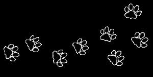 Hondenpootjes-1-e1558810985233.png