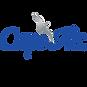Cape Air Logo