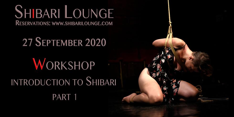 Workshop - Introduction to Shibari - part 1
