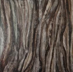 Rock and lichen 3