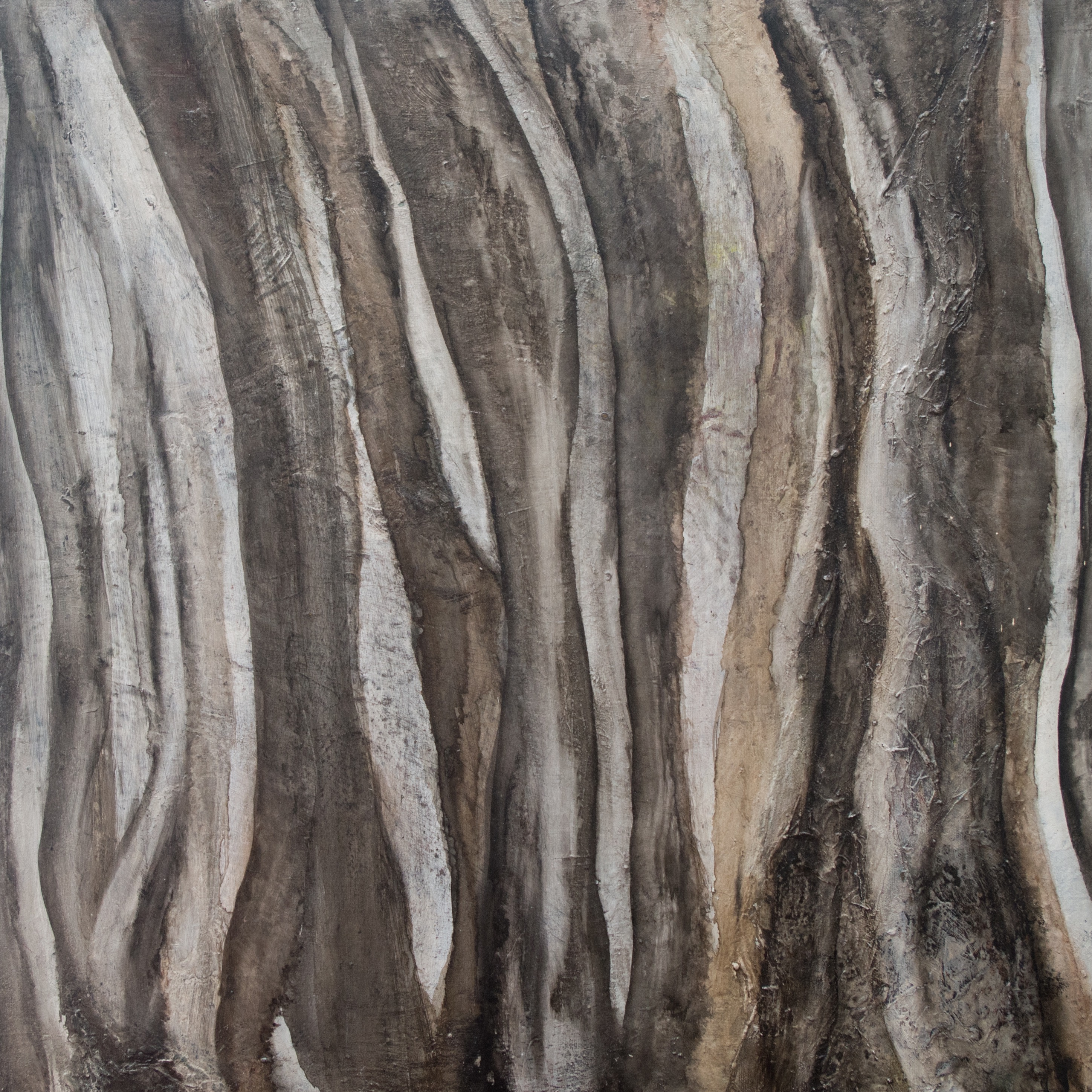 Rock and lichen 4