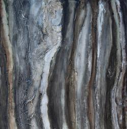 Rock and lichen 2