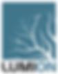Lumion_logo_2017.svg.png