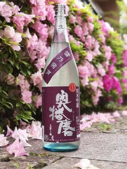 A Spring Hope (Okuharima)
