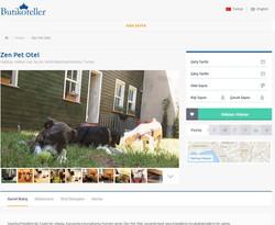 Butik Oteller Sitesinde Zen Pet Otel