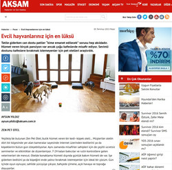 Akşam Gazetesi Sitesinde Zen Pet