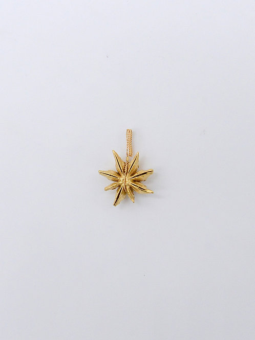 Gold Star Anise