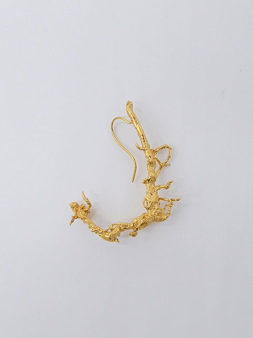 Gold Root Brooch / Earring