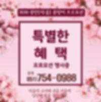 광안팝업.png