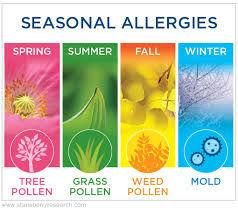 allergy 10.jpg