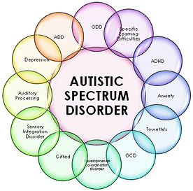 Homeopathic treatment of autism spectrum disorder, natural treatment autism 07095, autism treatment edison nj, homeopathic treatment autism 08820, natural treatment of developmental delays NJ