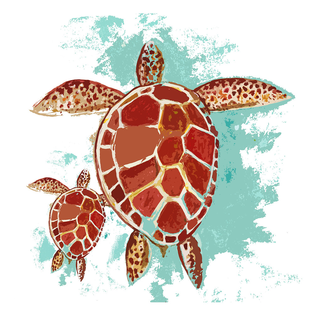 turtle artwork - created from Rebecca's digitized watercolor painting
