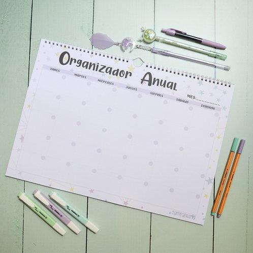 Org. Anual Constelaciones