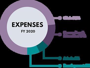 2020pretermannualreport_expensesfy2020.p