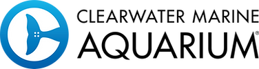 CMA Horiz logo.png