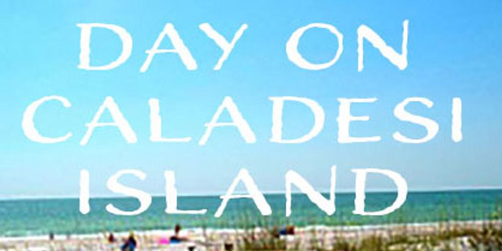 Day on Caladesi Island