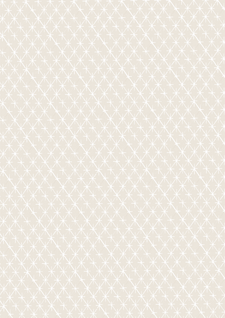 Texture-19-19.png
