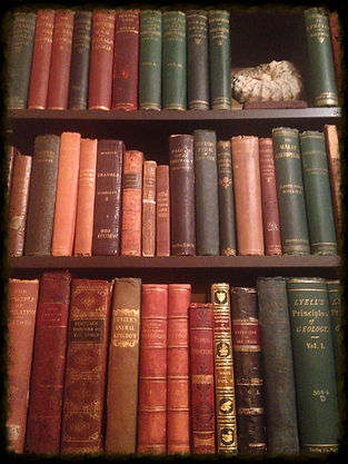 Antique Book Collection David Wooten