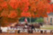 Fall leaves-carriage D2012-DMD-1025-2554