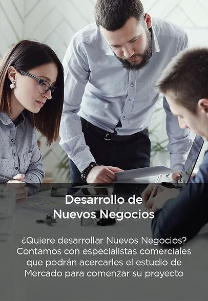 desarrollo nuevos negocios (QUIERE).jpg