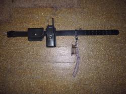 Plain leather prison officer belt