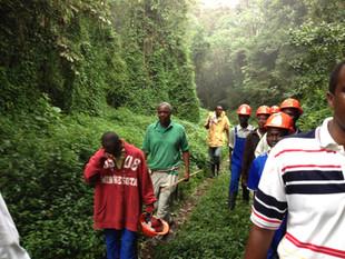 Michel in rainforest.jpg