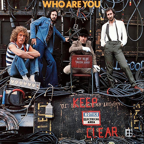 WHO, THE - WHO ARE YOU (LP)