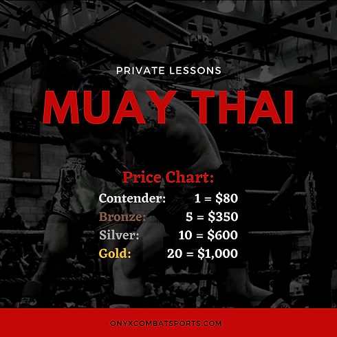 Muay Thai Private Lessons.png