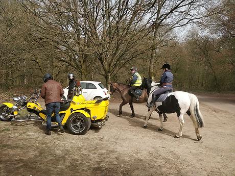 Bumblebee meets Cholsey Farm Riding.jpg