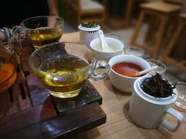 Tee Degustation bei Tealaya