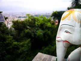 Aussicht vom Monkey Tempel