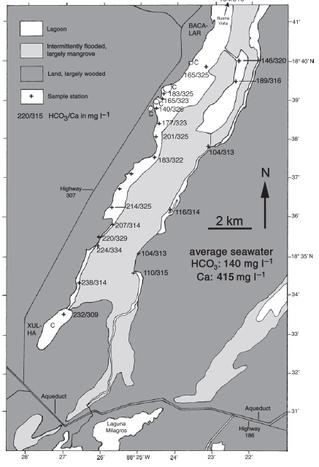 ¿Dónde se encuentran los estromatolitos de la Laguna Bacalar?