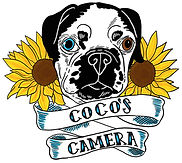 Coco logo no background.jpg