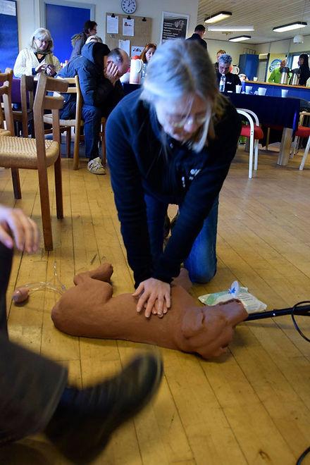Førstehjælp på hunde 2.jpg