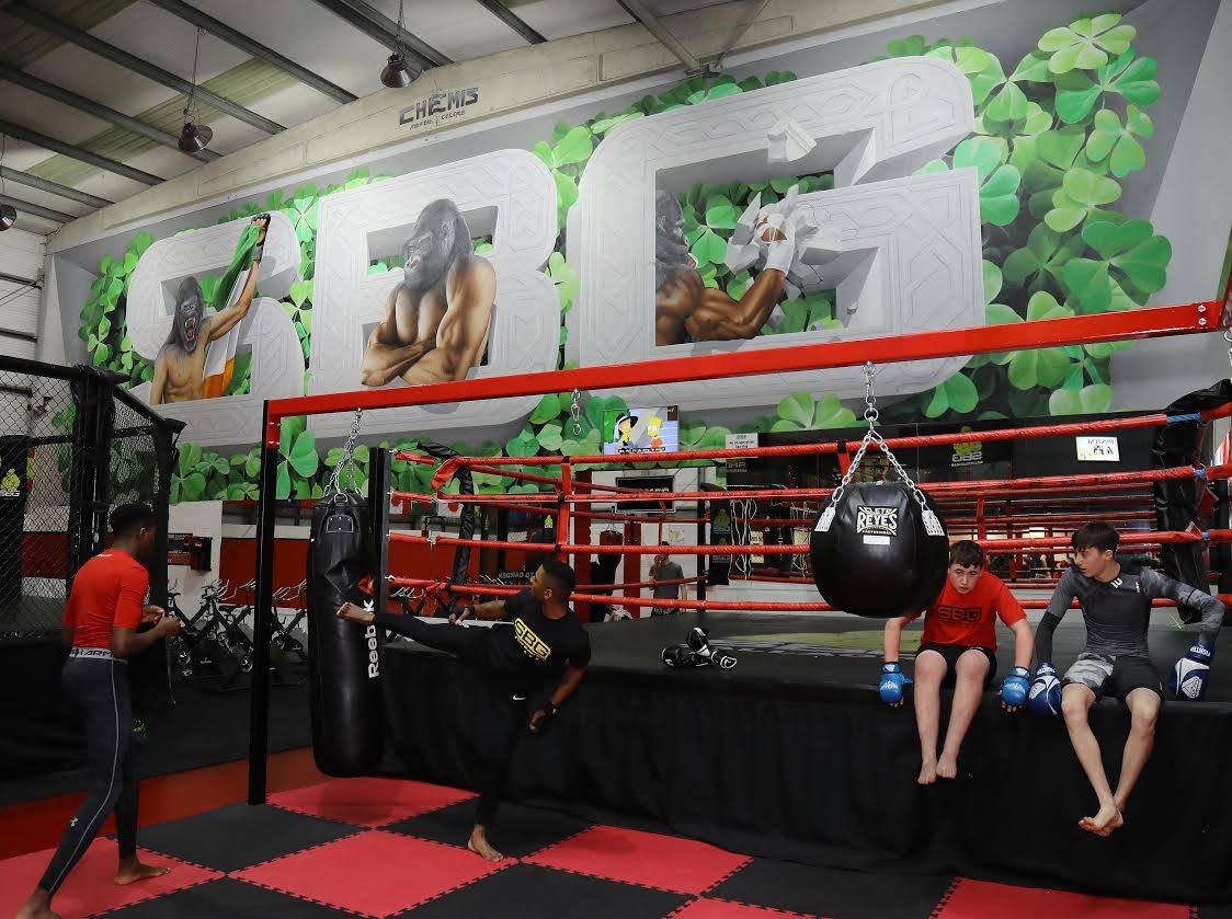 Chemis @ SBG - Straight blast gym