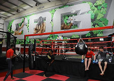 Conor McGregor SBG Gym i Irland Dublin add mor colors artwork