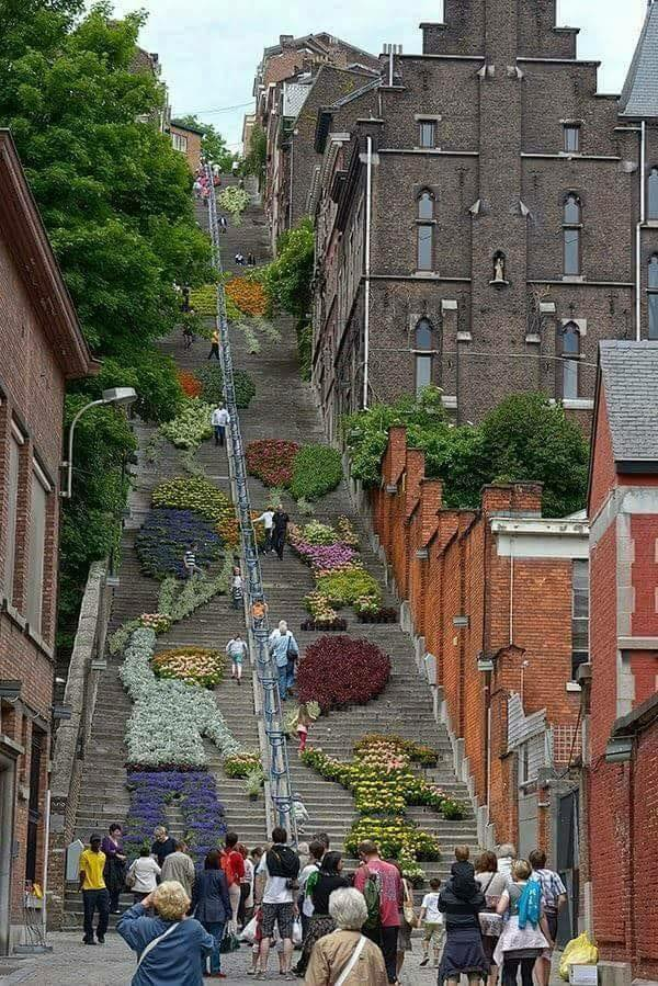 Stair installation by flowers in Belgium