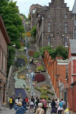 Stair installation by flowers in Belgium