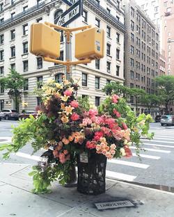 Lewis Miller, New York
