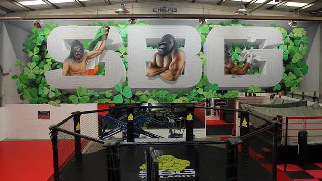 SBG Gym in Dublin, Ireland - Conor McGregor and Add More Colors